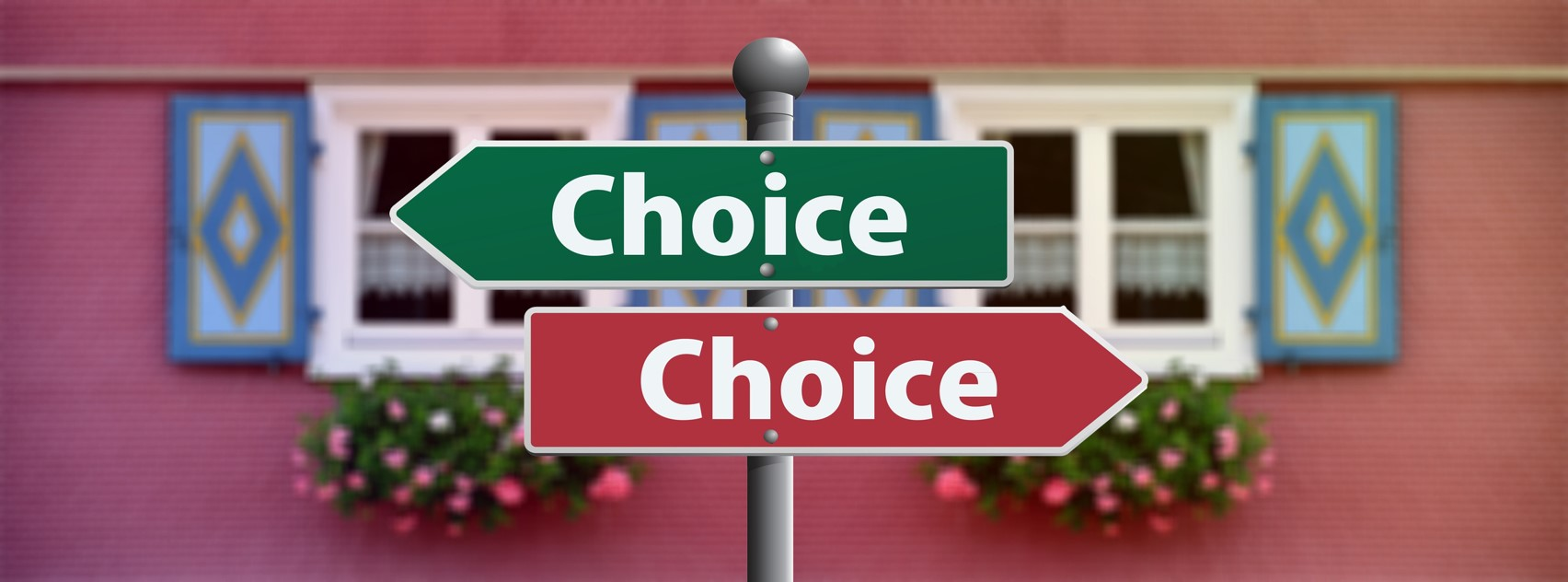 Photo of 2 street signs saying Choice - Choice
